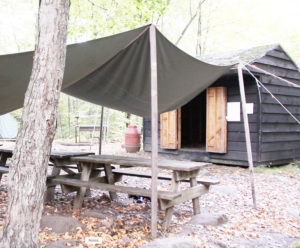 Mini Cabin site with picnic tables