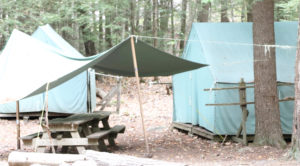 Canvas Tents in a woodsy location.
