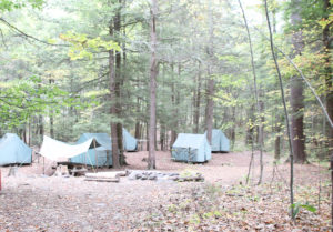 A grouping Canvas Tents in woods