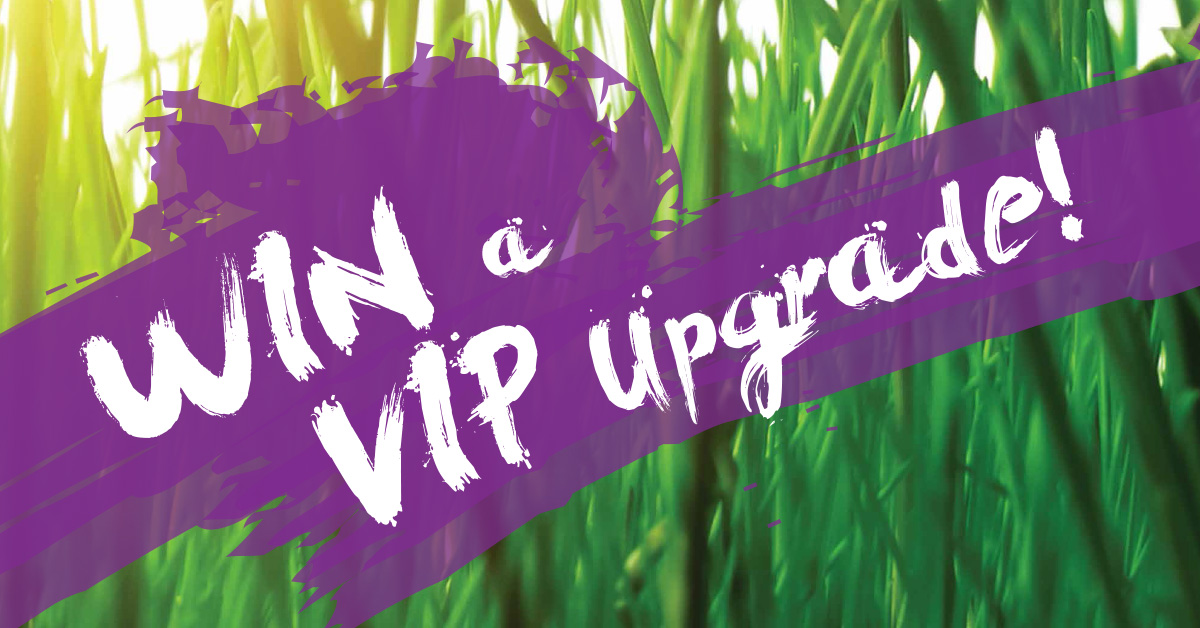 Ziontific Music Festival - Russell, MA - Enter to win a VIP Upgrade