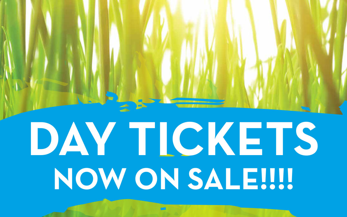 Ziontific Music Festival 2019 Russell, MA Single Day Tickets now available