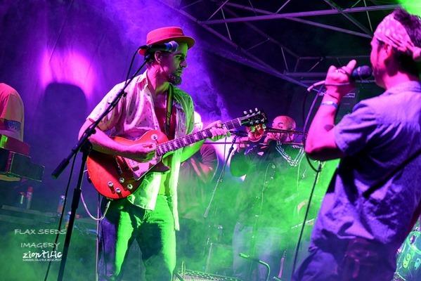 Ziontific Music Festival 10 Ft Ganja Plant